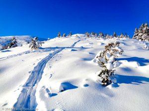 Crête du Pic d'Estibat · Pyrénées, Pyrénées ariégeoises, Massif des Trois Seigneurs, FR · GPS 42°53'45.41'' N 1°27'7.51'' E · Altitude 1342m