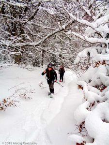 Montée au Col de l'Osque · Pyrénées, Pyrénées ariégeoises, Vallon d'Ascou, FR · GPS 42°42'59.82'' N 1°53'22.78'' E · Altitude 1353m