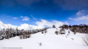 Col de l'Osque · Pyrénées, Pyrénées ariégeoises, Vallon d'Ascou, FR · GPS 42°42'40.49'' N 1°53'35.61'' E · Altitude 1443m