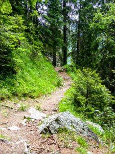 Sentier des Gardes · Alpes, Préalpes de Savoie, Aiguilles Rouges, FR · GPS 45°55'51.35'' N 6°51'12.67'' E · Altitude 1581m