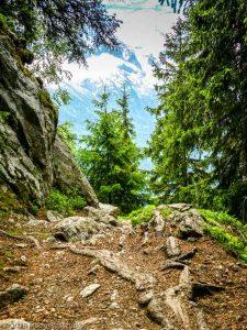 Sentier des Gardes · Alpes, Préalpes de Savoie, Aiguilles Rouges, FR · GPS 45°55'49.91'' N 6°51'12.56'' E · Altitude 1649m