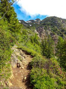 Belle Lachat · Alpes, Préalpes de Savoie, Aiguilles Rouges, FR · GPS 45°55'1.50'' N 6°49'38.57'' E · Altitude 1906m