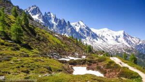 Signal Forbes · Alpes, Massif du Mont-Blanc, Vallée de Chamonix, FR · GPS 45°55'32.52'' N 6°54'24.38'' E · Altitude 2117m