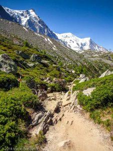Plan de l'Aiguille · Alpes, Massif du Mont-Blanc, Vallée de Chamonix, FR · GPS 45°54'43.04'' N 6°53'48.49'' E · Altitude 2093m