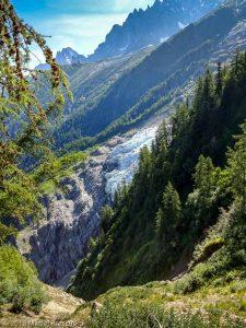 Montée à la Jonction · Alpes, Massif du Mont-Blanc, Vallée de Chamonix, FR · GPS 45°53'21.02'' N 6°50'56.69'' E · Altitude 1781m
