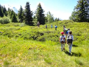 Le Prarion · Alpes, Massif du Mont-Blanc, Vallée de Chamonix, FR · GPS 45°53'38.98'' N 6°45'1.79'' E · Altitude 1941m