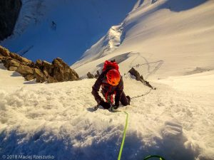 ortie au Col du Mont Maudit · Alpes, Massif du Mont-Blanc, Vallée de Chamonix, FR · GPS 45°50'55.96'' N 6°52'24.88'' E · Altitude 4345m