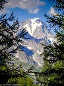 Grandes Jorasses depuis la Visaille · Alpes, Massif du Mont-Blanc, Val Veny, IT · GPS 45°46'54.98'' N 6°53'36.76'' E · Altitude 1781m