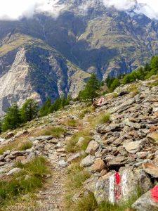 Dans la montée à Domhutte · Alpes, Alpes valaisannes, Massif des Mischabels, CH · GPS 46°6'16.17'' N 7°48'29.29'' E · Altitude 2277m