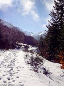"""Vallon de Coume Grande "" · Pyrénées, Ariège, Ascou, FR · GPS 42°42'51.67'' N 1°56'26.16'' E · Altitude 1372m"