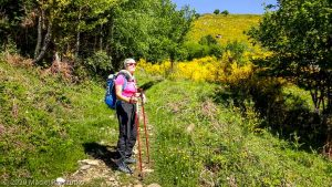 Appy · Pyrénées, Pyrénées Ariégoises, Massif de Tabe, FR · GPS 42°47'51.61'' N 1°44'24.45'' E · Altitude 1243m