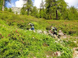 Reco Marathon du Mont-Blanc J2 · Alpes, Aiguilles Rouges, Vallée de Chamonix, FR · GPS 45°59'21.79'' N 6°55'12.26'' E · Altitude 1626m