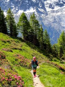 Stage Trail Découverte J1 · Alpes, Aiguilles Rouges, Vallée de Chamonix, FR · GPS 45°56'12.61'' N 6°51'0.24'' E · Altitude 1976m