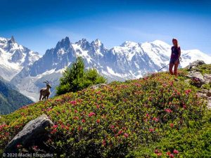 Stage Trail Initiation J3 · Alpes, Aiguilles Rouges, Vallée de Chamonix, FR · GPS 45°59'14.32'' N 6°54'37.59'' E · Altitude 2059m