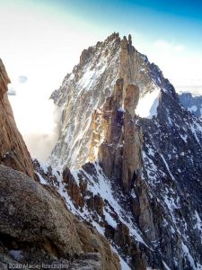 Escalade de l'Aiguille du Jardin · Alpes, Massif du Mont-Blanc, FR · GPS 45°56'0.04'' N 6°58'39.81'' E · Altitude 3843m