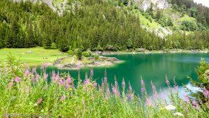 Reco Swiss Peaks 170 · Alpes, Alpes Valaisannes, CH · GPS 46°20'38.61'' N 6°50'12.61'' E · Altitude 1423m