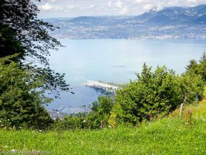 Reco Swiss Peaks 170 · Alpes, Alpes Valaisannes, CH · GPS 46°21'57.59'' N 6°51'18.10'' E · Altitude 1105m