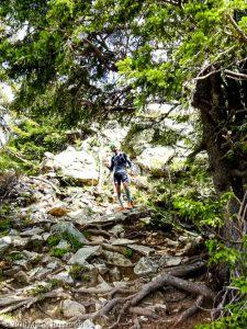 Session privée · Préalpes de Haute-Savoie, Aiguilles Rouges, Vallée de Chamonix, FR · GPS 45°57'37.56'' N 6°47'4.46'' E · Altitude 1863m
