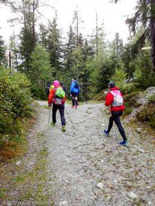 Stage Trail Découverte J2 · Alpes, Massif du Mont-Blanc, Vallée de Chamonix, FR · GPS 45°56'52.35'' N 6°54'11.78'' E · Altitude 1176m
