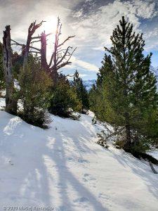 Pleteau de Beille · Pyrénées, Pyrénées Ariégoises, FR · GPS 42°42'31.31'' N 1°41'29.82'' E · Altitude 1800m