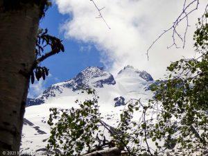 Session privée du trail-running · Alpes, Massif du Mont-Blanc, Vallée de Chamonix, FR · GPS 45°58'41.40'' N 6°54'54.67'' E · Altitude 1462m