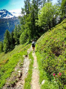 WE Choc Soutenu · Alpes, Massif du Mont-Blanc, Vallée de Chamonix, FR · GPS 46°2'13.44'' N 6°55'12.82'' E · Altitude 1830m