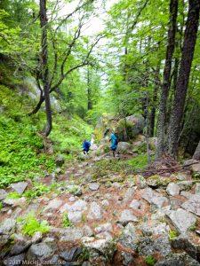 Stage Trail Initiation · Alpes, Massif du Mont-Blanc, Vallée de Chamonix, FR · GPS 45°56'6.19'' N 6°55'5.69'' E · Altitude 1768m