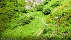 Session privée du trail-running · Alpes, Aiguilles Rouges, Vallée de Chamonix, FR · GPS 45°56'5.65'' N 6°50'57.63'' E · Altitude 1841m