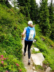Session privée du trail-running · Alpes, Aiguilles Rouges, Vallée de Chamonix, FR · GPS 45°56'54.82'' N 6°52'1.99'' E · Altitude 1816m