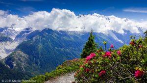 Session privée du trail-running · Alpes, Aiguilles Rouges, Vallée de Chamonix, FR · GPS 45°58'19.49'' N 6°53'47.87'' E · Altitude 1951m