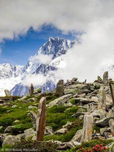 Stage Trail Découverte · Alpes, Massif du Mont-Blanc, Vallée de Chamonix, FR · GPS 45°55'42.54'' N 6°54'45.19'' E · Altitude 2146m
