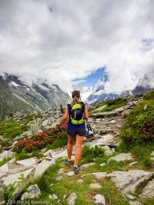 Stage Trail Découverte · Alpes, Massif du Mont-Blanc, Vallée de Chamonix, FR · GPS 45°55'42.32'' N 6°54'45.00'' E · Altitude 2149m