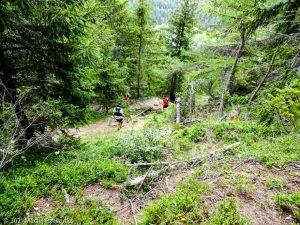 Stage Trail Initiation · Alpes, Massif du Mont-Blanc, Vallée de Chamonix, FR · GPS 46°2'21.10'' N 6°55'43.46'' E · Altitude 1454m