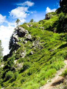 Stage Trail Initiation · Alpes, Massif du Mont-Blanc, Vallée de Chamonix, FR · GPS 45°52'58.70'' N 6°51'8.37'' E · Altitude 2087m
