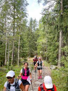 Stage Trail Découverte · Alpes, Massif du Mont-Blanc, Vallée de Chamonix, FR · GPS 45°56'52.81'' N 6°54'13.86'' E · Altitude 1175m