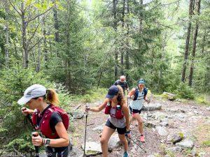 Stage Trail Découverte · Alpes, Massif du Mont-Blanc, Vallée de Chamonix, FR · GPS 45°56'53.24'' N 6°54'14.32'' E · Altitude 1179m