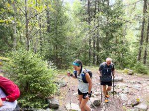 Stage Trail Découverte · Alpes, Massif du Mont-Blanc, Vallée de Chamonix, FR · GPS 45°56'53.24'' N 6°54'14.34'' E · Altitude 1179m